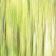 Grastränke abstrakt II