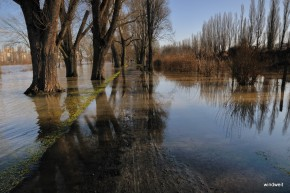 Hochwasser am Sachsenhäuser Ufer