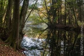 Stadtwaldseen im Herbst